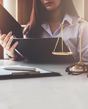 Procuradoria do Estado (PGE) e Procuradoria do Município (PGM)