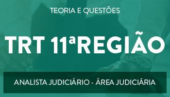CURSO PARA  O CONCURSO DO TRT - 11ª REGIÃO - CARGO: ANALISTA JUDICIÁRIO - ÁREA JUDICIÁRIA