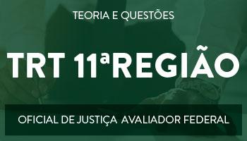 CURSO PARA  O CONCURSO DO TRT - 11ª REGIÃO - CARGO: OFICIAL DE JUSTIÇA AVALIADOR FEDERAL