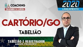 6 MESES | COACHING COM MEMBRO DA CARREIRA| PROF. ANDRÉ PRUDENTE